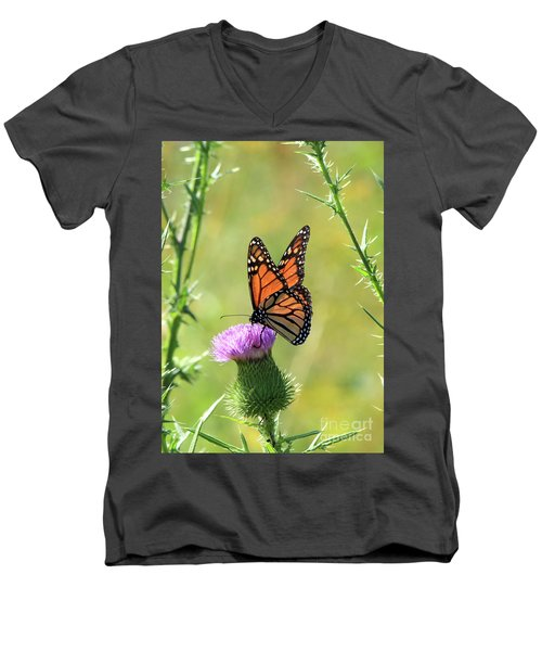 Sunlit Monarch Men's V-Neck T-Shirt