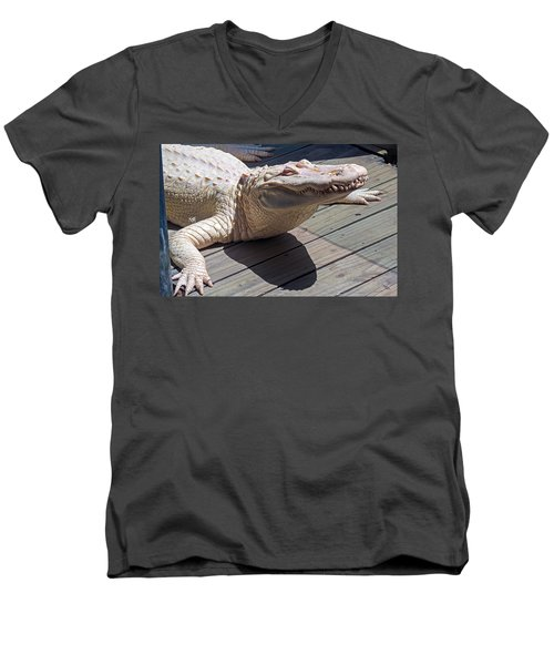 Sunning Albino Alligator Men's V-Neck T-Shirt by Kenneth Albin