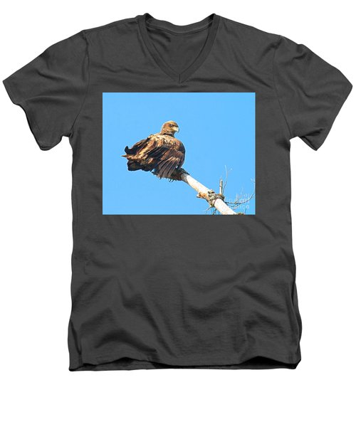 Men's V-Neck T-Shirt featuring the photograph Sunning Out On A Limb by Debbie Stahre