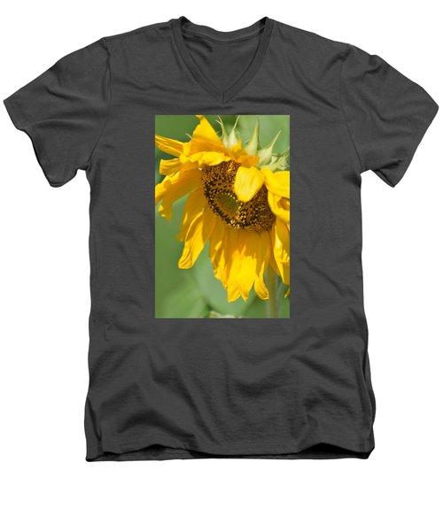 Sunny One Men's V-Neck T-Shirt