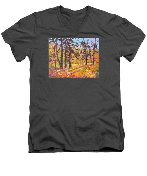 Sunny Place Men's V-Neck T-Shirt