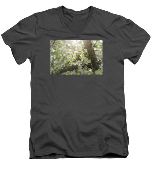 Sunrise Blossoms Men's V-Neck T-Shirt