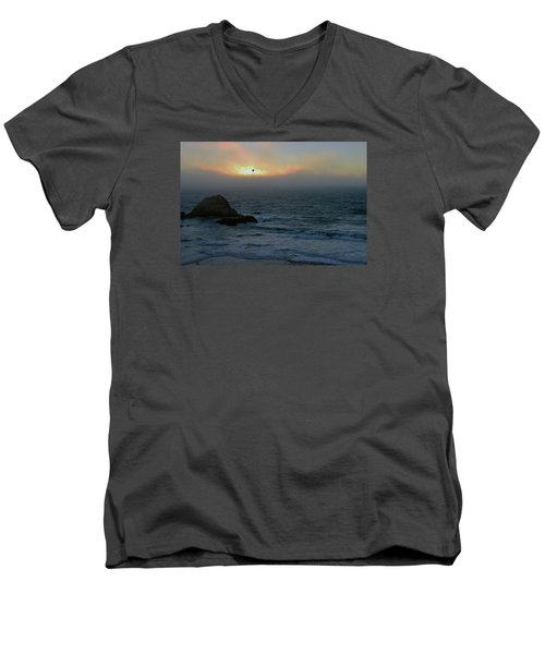 Sunset With The Bird Men's V-Neck T-Shirt