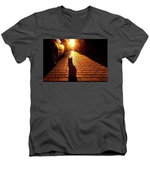Sunset Cat Men's V-Neck T-Shirt