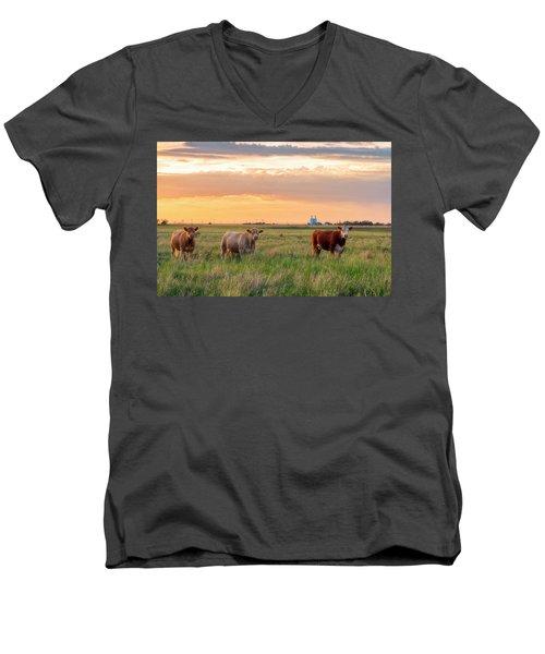Sunset Cattle Men's V-Neck T-Shirt