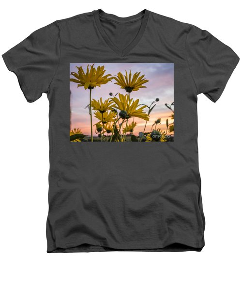 Sunset Delight Men's V-Neck T-Shirt