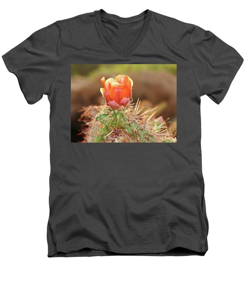 Sunset In The Deserts Men's V-Neck T-Shirt