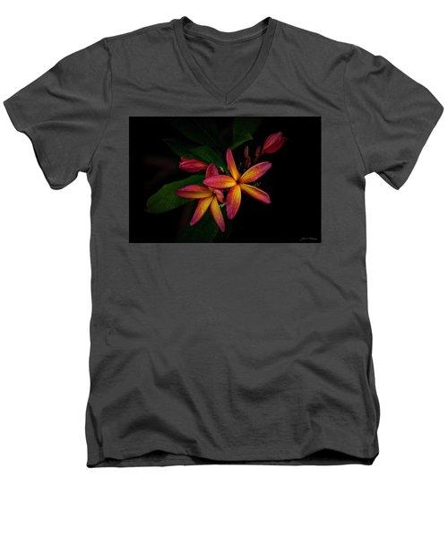 Sunset Plumerias In Bloom #2 Men's V-Neck T-Shirt