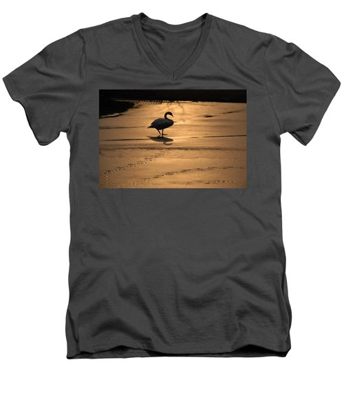 Men's V-Neck T-Shirt featuring the photograph Sunset Swan by Richard Bryce and Family