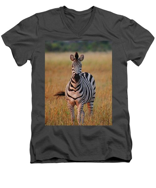 Sunset Zebra Men's V-Neck T-Shirt