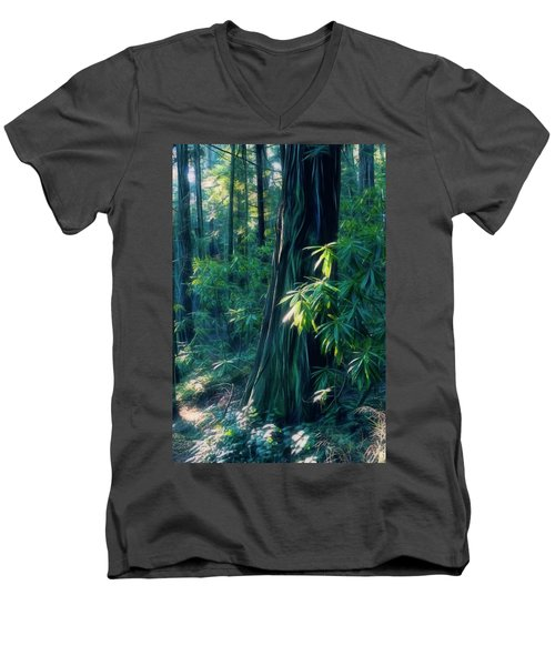 Sunshine In The Forest Men's V-Neck T-Shirt
