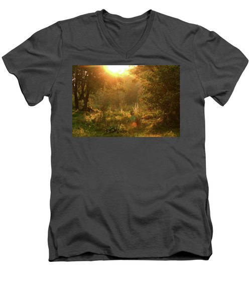 Men's V-Neck T-Shirt featuring the photograph Sunshine In The Meadow by Emanuel Tanjala