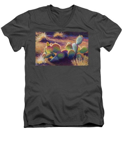 Sunstuck Men's V-Neck T-Shirt