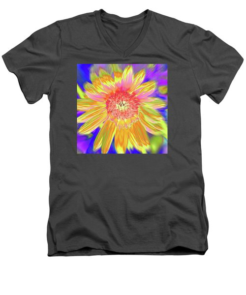 Sunsweet Men's V-Neck T-Shirt