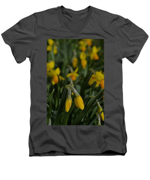 Sure Enough Spring Men's V-Neck T-Shirt by Tim Good