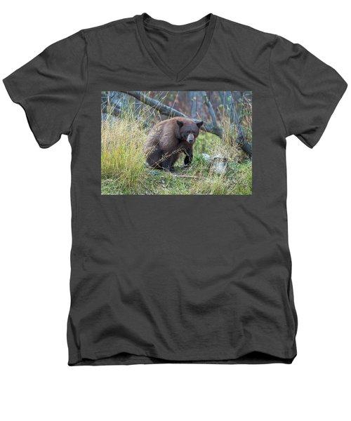 Surprised Bear Men's V-Neck T-Shirt by Scott Warner