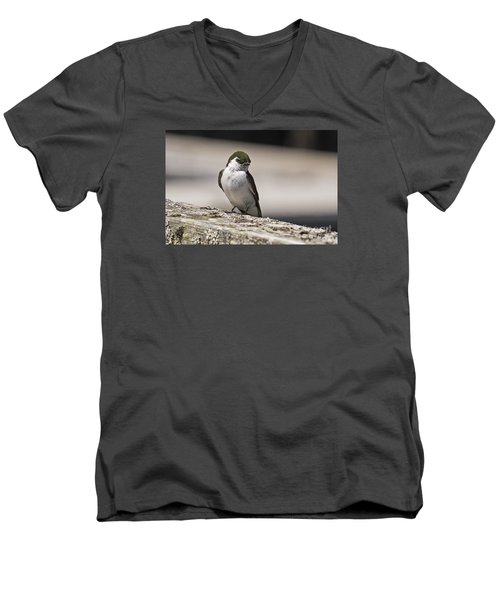 Men's V-Neck T-Shirt featuring the photograph Swallow by Inge Riis McDonald