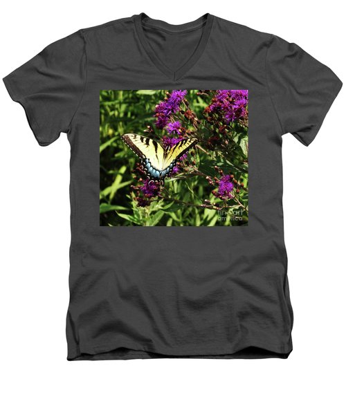 Men's V-Neck T-Shirt featuring the photograph Swallowtail On Butterfly Weed by J L Zarek