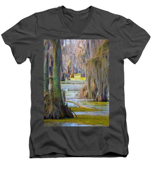 Swamp Curtains In February Men's V-Neck T-Shirt
