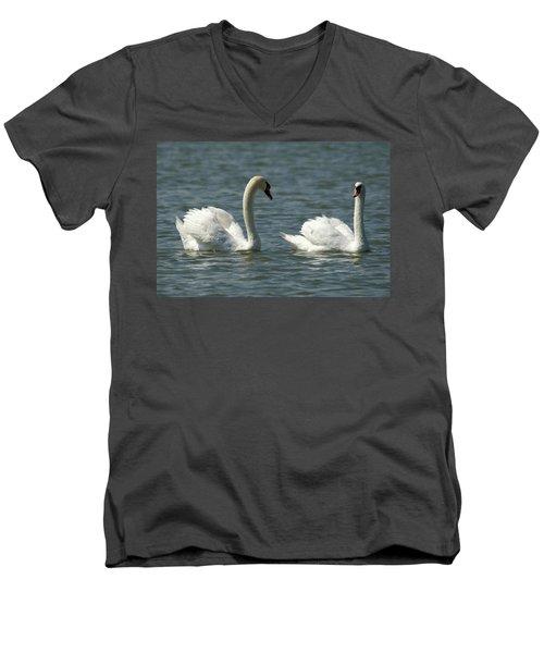 Swans On Lake  Men's V-Neck T-Shirt