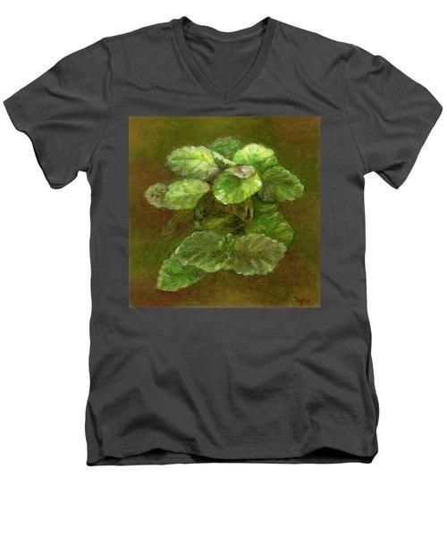 Swedish Ivy Men's V-Neck T-Shirt