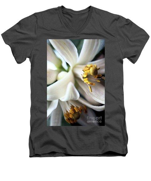 Sweet Fragrance 2 Men's V-Neck T-Shirt by Victor K