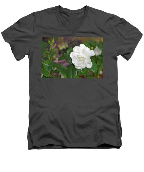 Sweet Gardenia Men's V-Neck T-Shirt