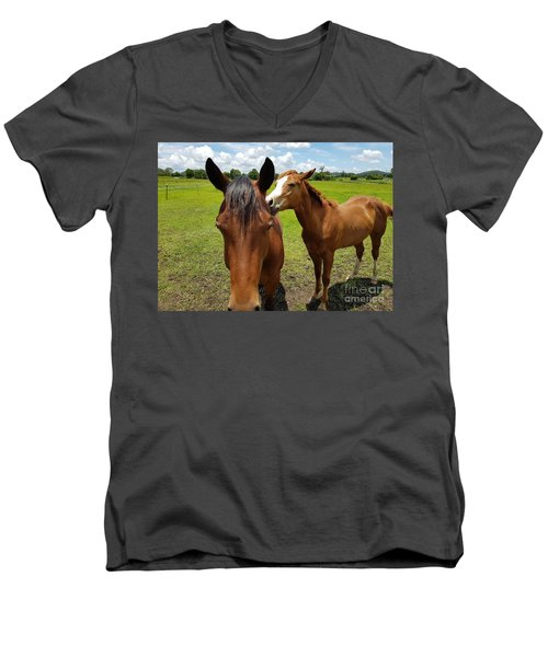 Sweet Horses  Men's V-Neck T-Shirt
