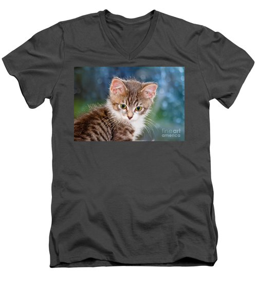Sweet Kitten Men's V-Neck T-Shirt