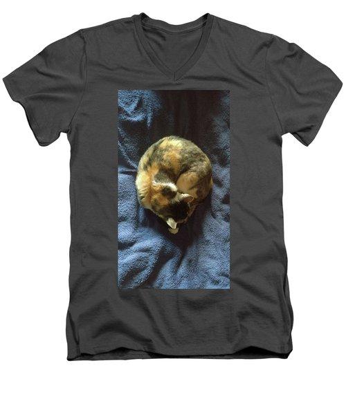 Sweet Lilly Men's V-Neck T-Shirt