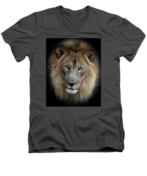Sweet Male Lion Men's V-Neck T-Shirt