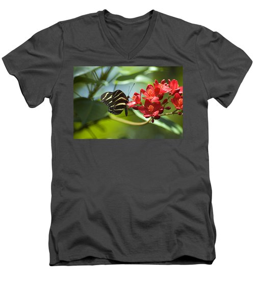 Sweet Nectar Men's V-Neck T-Shirt