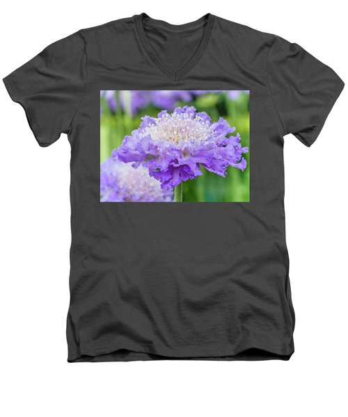 Men's V-Neck T-Shirt featuring the photograph Sweet Petal by Nick Bywater