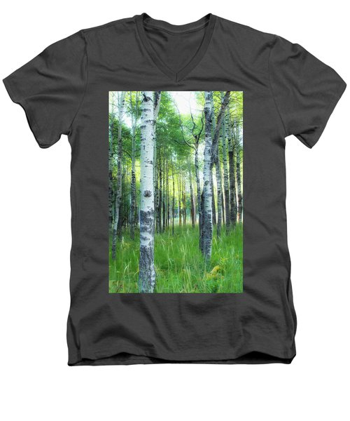 Tahoe Birch Men's V-Neck T-Shirt