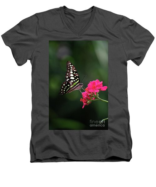 Tailed Jay Butterfly -graphium Agamemnon- On Pink Flower Men's V-Neck T-Shirt