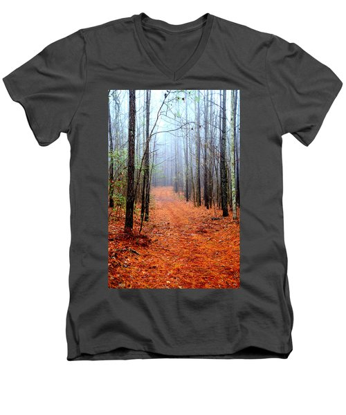 Taking A Stroll Men's V-Neck T-Shirt