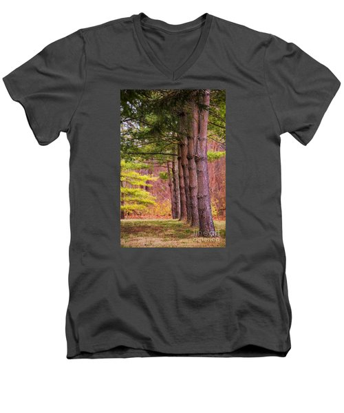 Tall Pines Standing Guard Men's V-Neck T-Shirt