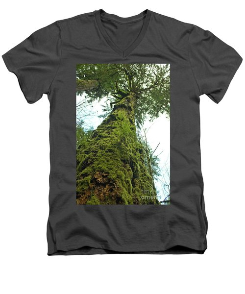 Tall Tall Tree Men's V-Neck T-Shirt