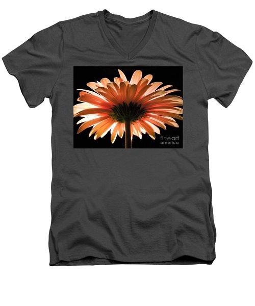 Tangerine Gerber Daisy Men's V-Neck T-Shirt