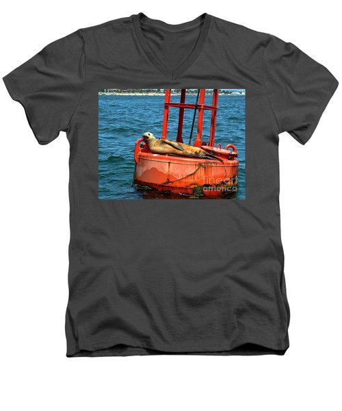 Men's V-Neck T-Shirt featuring the photograph Tanning Sea Lion On Buoy by Mariola Bitner
