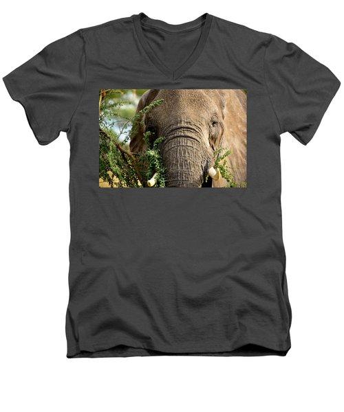 Tarangire 5 Men's V-Neck T-Shirt