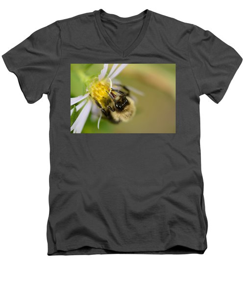 Tasting The Flower Men's V-Neck T-Shirt