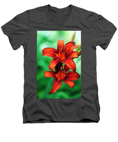 Tawny Beauty Men's V-Neck T-Shirt