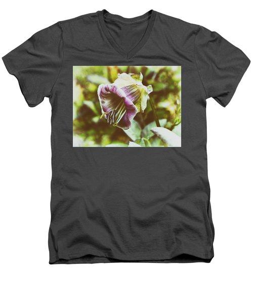Tenderness Men's V-Neck T-Shirt
