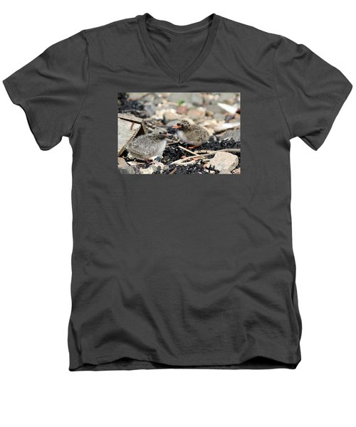 Men's V-Neck T-Shirt featuring the photograph Tern Chicks by David Grant