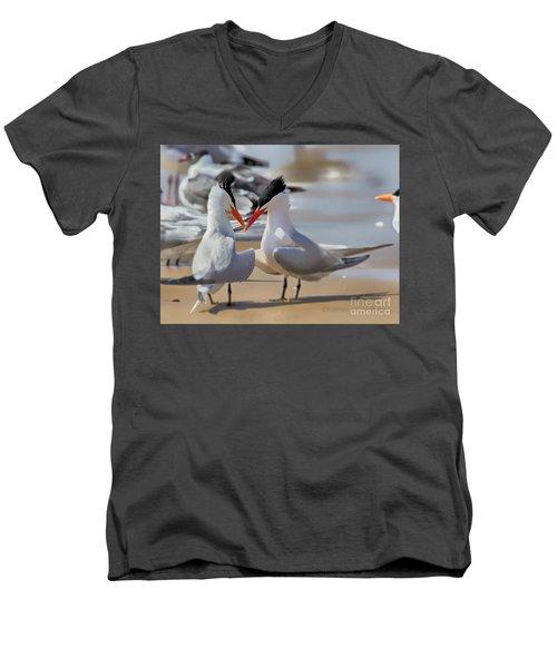 Terns Head2head Men's V-Neck T-Shirt