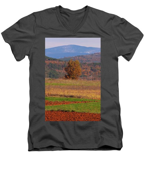 Terra Istria Men's V-Neck T-Shirt