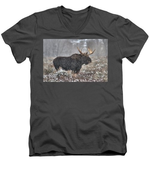 Men's V-Neck T-Shirt featuring the photograph Teton Snowy Moose by Adam Jewell
