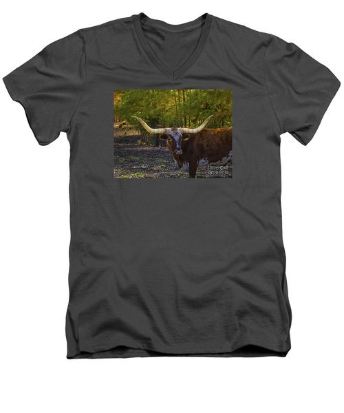 Men's V-Neck T-Shirt featuring the photograph Texas Long Horn Bull by Melissa Messick