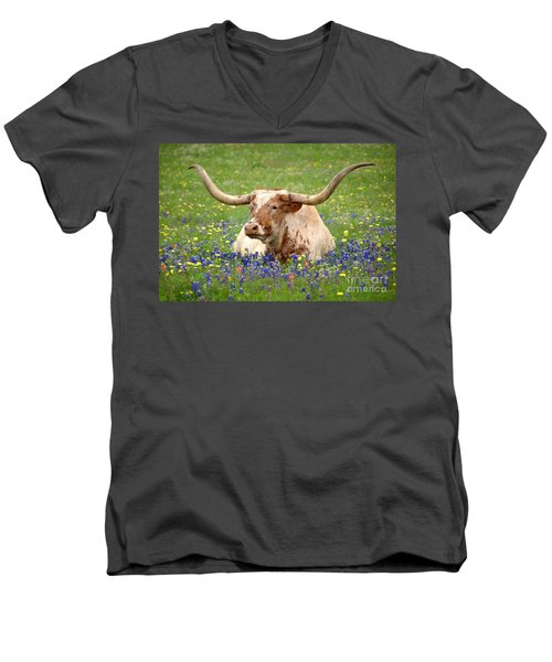 Texas Longhorn In Bluebonnets Men's V-Neck T-Shirt by Jon Holiday